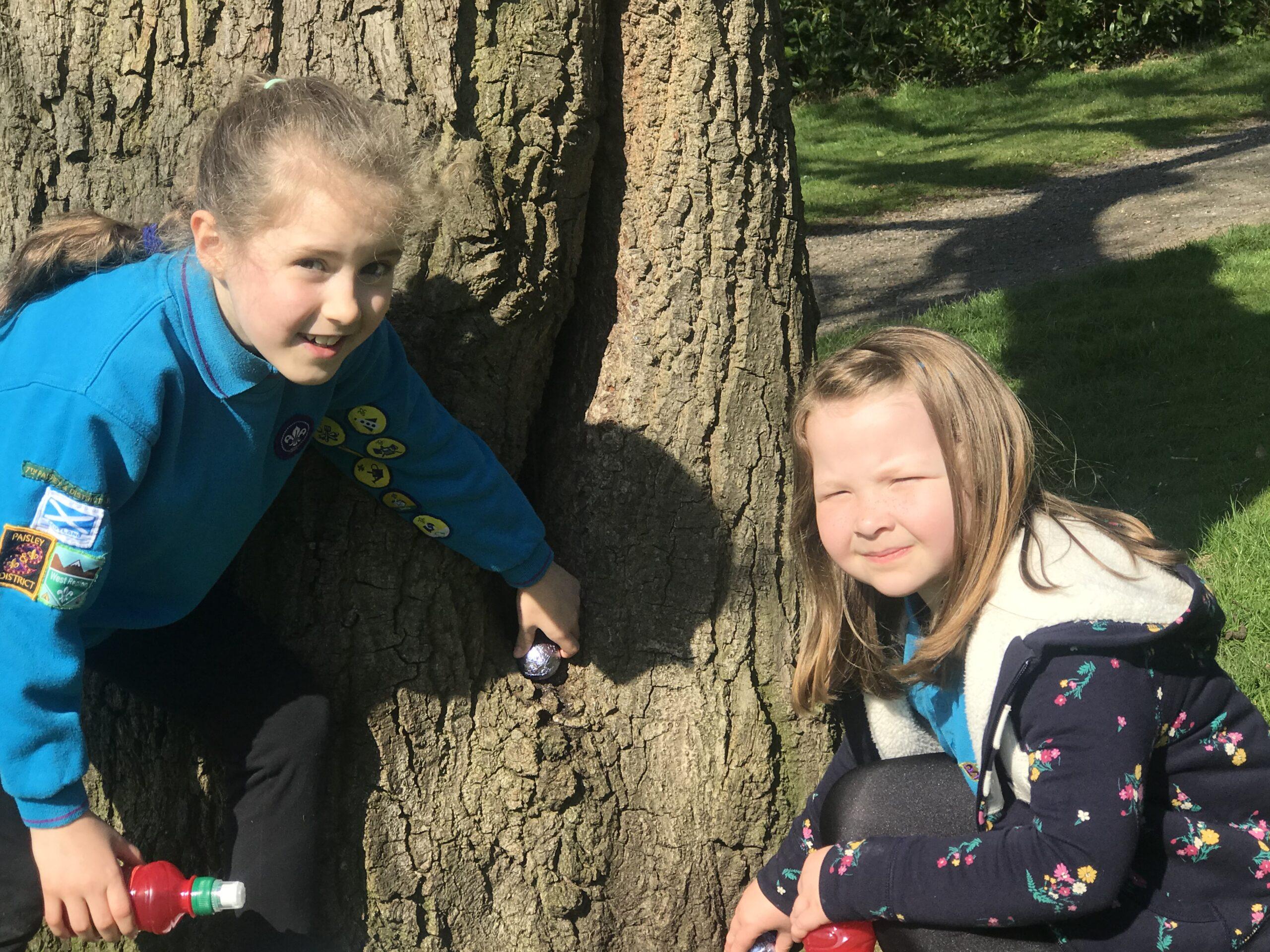 Beaver Scouts return